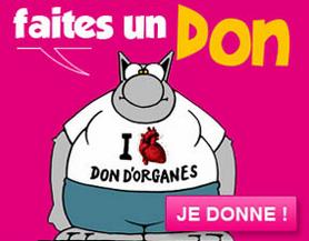 don organes