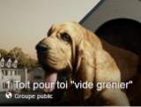image groupe facebook vide grenier de l association 1 TOIT POUR TOI
